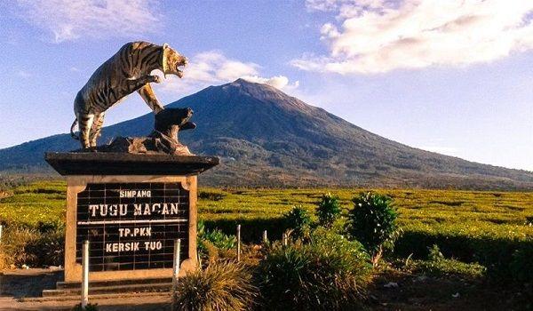 5 Gunung Tertinggi di Indonesia yang Wajib Kamu Ketahui!