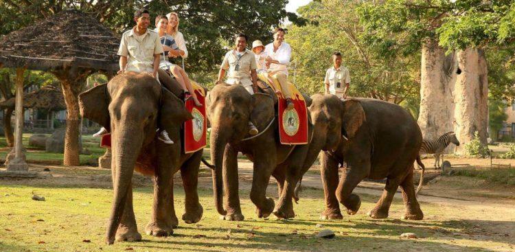 Inilah 10 Tempat Wisata Anak yang Hits Di Bali
