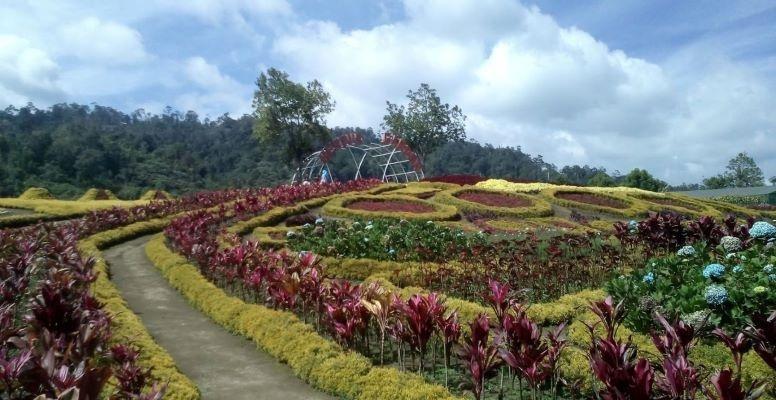 7 Tempat Wisata di Jambi yang Paling Hits